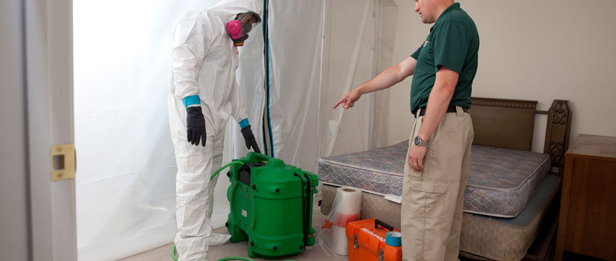 Yarmouth, MA mold removal process